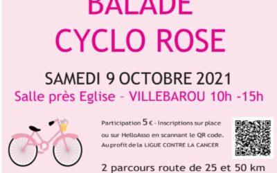 Octobre Rose «organisation du Loir-et-Cher»